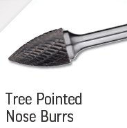 Tree Pointed Nose Burrs