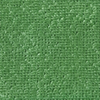 Green - 40 x 40cm Microfibre Cleaning Cloth
